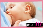 Your Baby at 10 Weeks: Development and Care